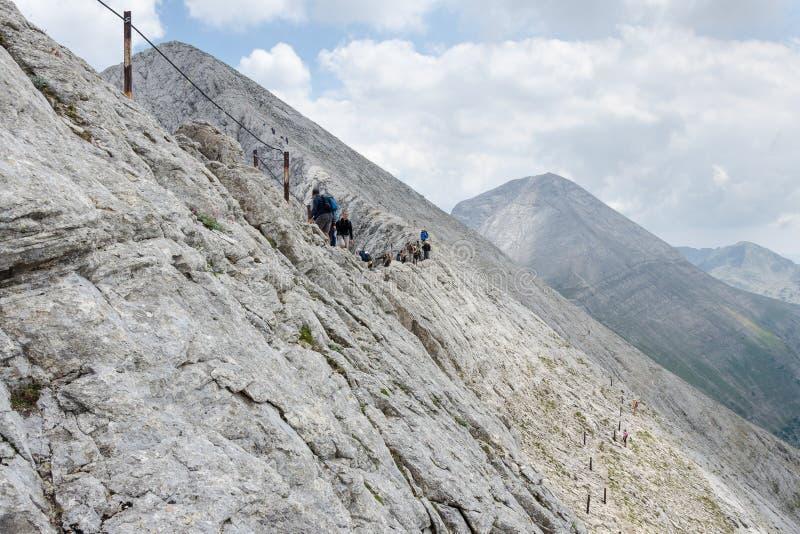 Ojämna lutningar av den Koncheto kanten, Pirin nationalpark, Bulgarien royaltyfria bilder