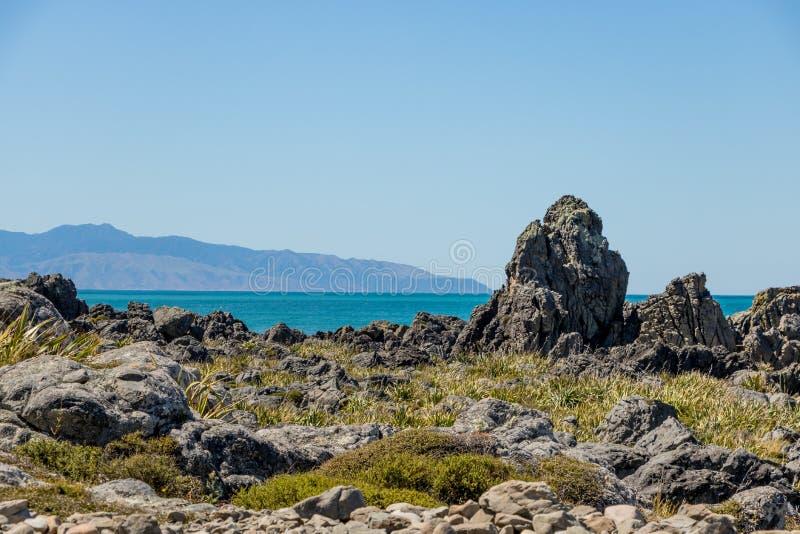 Ojämnt vaggar av den nyazeeländska kustlinjen, udde Palliser arkivfoto