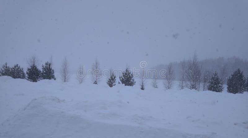 Oj denna snöstorm i den ryska byn royaltyfria bilder