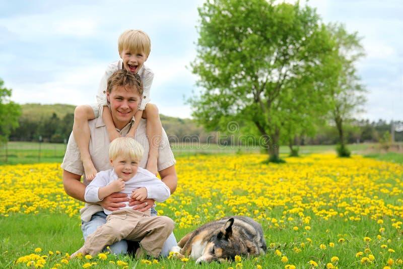 Ojciec, dzieci i Psi Relaksować w kwiat łące, zdjęcie royalty free