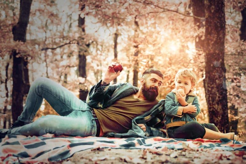Ojciec i syn Modnisia brodaty tata z synem wydaje czas w lasowym Brutalnym brodatym mężczyźnie i chłopiec je jabłka Las fotografia stock