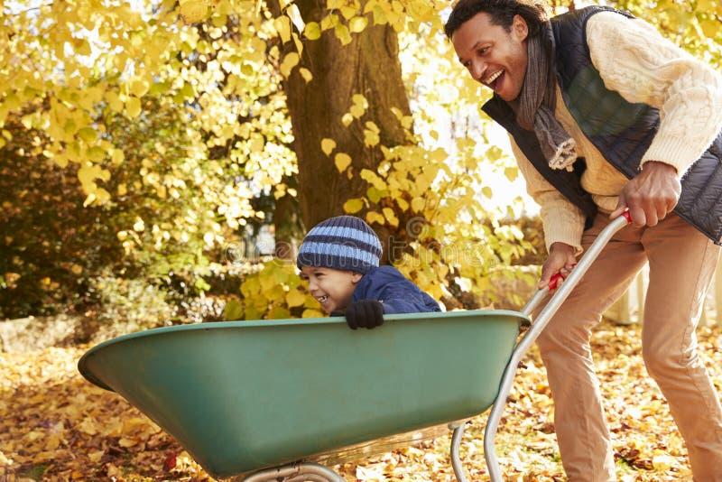 Ojciec W jesień ogródzie Daje syn przejażdżce W Wheelbarrow fotografia royalty free
