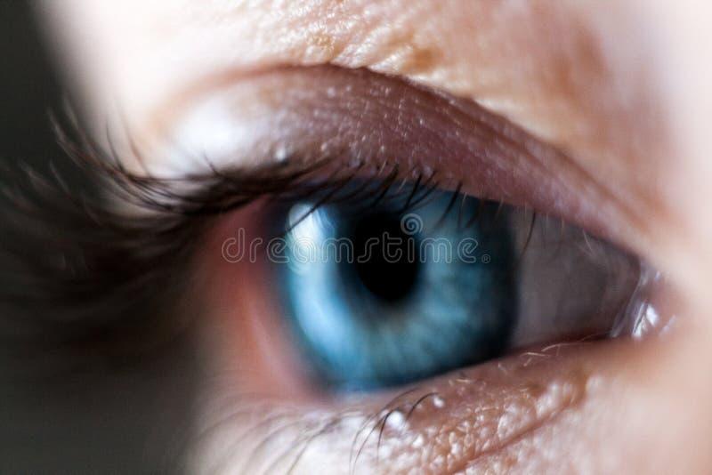 Ojo azul colorido del iris de la mujer hermosa fotografía de archivo