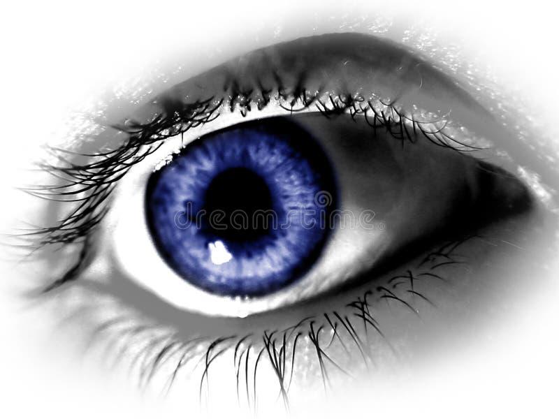 Ojo azul grande stock de ilustración