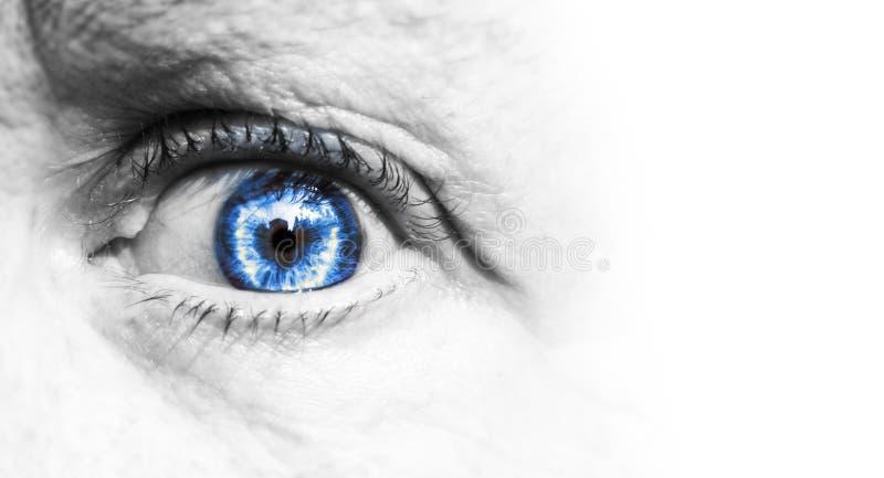 Ojo azul humano hermoso, macro, cierre encima del verde, marrón blanco y negro aislado en un fondo blanco imagen de archivo libre de regalías