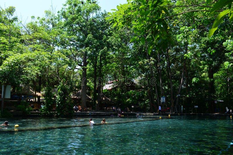 Ojo De Agua jezioro w Ometepe wyspie, Nikaragua obrazy royalty free