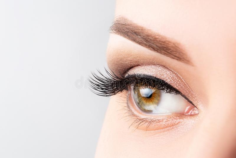Ojo de la mujer con las pestañas largas, el maquillaje hermoso y el primer marrón claro de la ceja Extensiones de la pestaña, lam foto de archivo libre de regalías