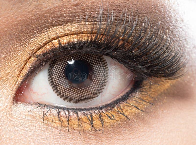 Ojo de la parte del cuerpo con cierre de la pestaña encima del maquillaje de la moda foto de archivo