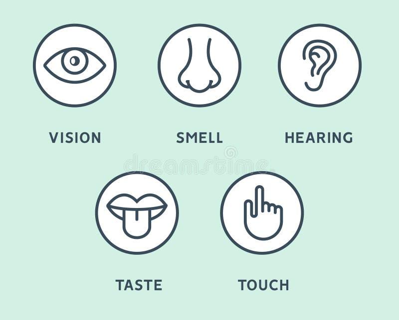 Ojo de la visi?n de cinco sentidos, nariz del olor, o?do de la audiencia, mano del tacto, boca del gusto y lengua humanos L?nea i stock de ilustración