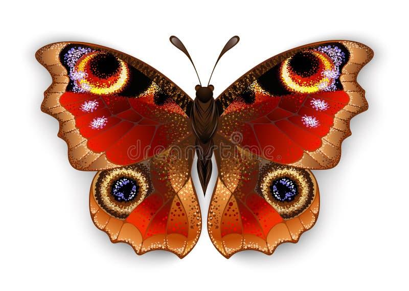 Ojo del pavo real de la mariposa en el fondo blanco libre illustration