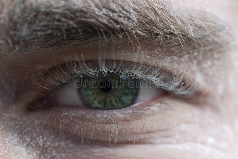 Ojo del trabajador imágenes de archivo libres de regalías