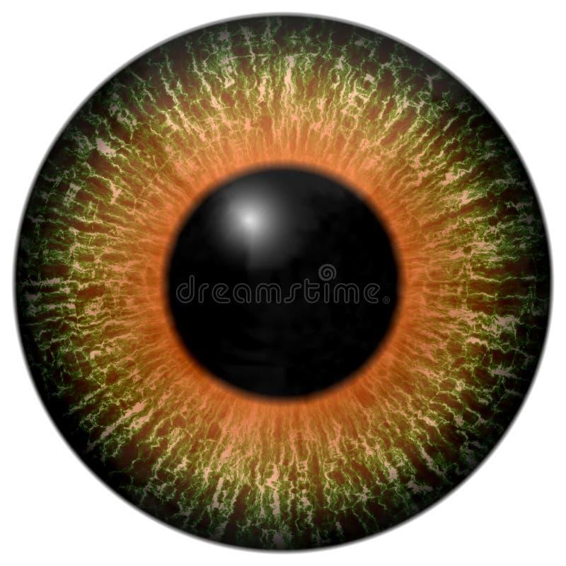 Ojo despredador del animal 3d ilustración del vector