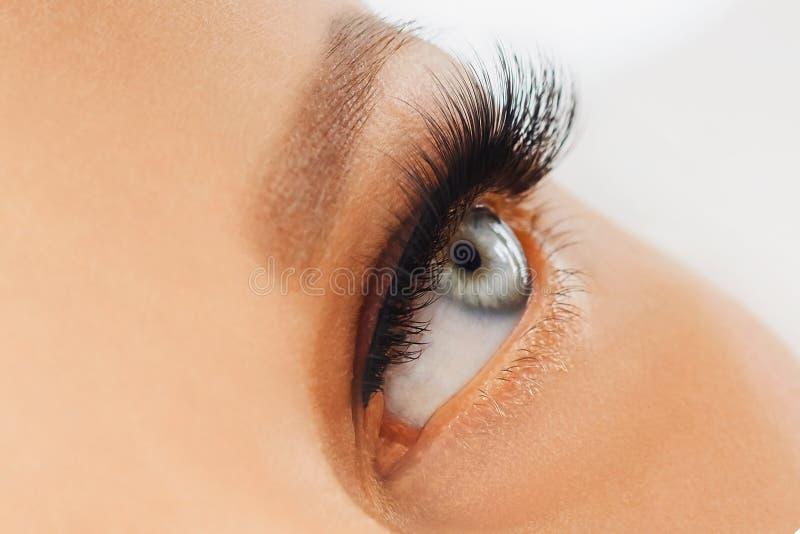 Ojo femenino con las pestañas falsas largas extremas Extensiones de la pestaña, maquillaje, cosméticos, belleza foto de archivo libre de regalías