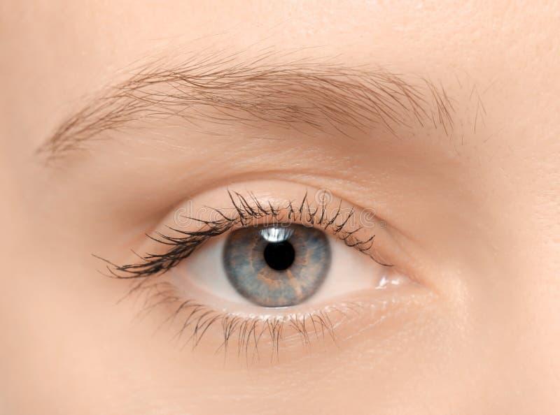 Ojo femenino con los latigazos largos, fotos de archivo