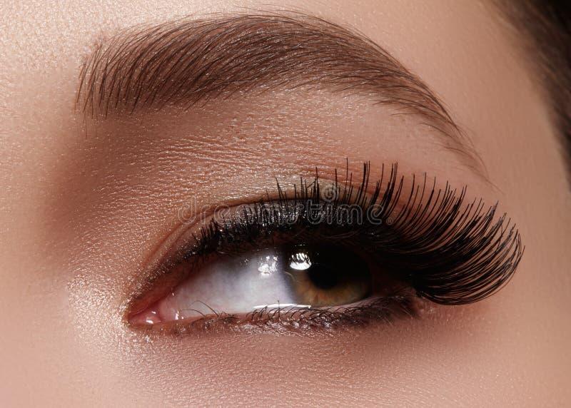 Ojo femenino hermoso con las pestañas largas extremas, maquillaje negro del trazador de líneas Maquillaje perfecto, latigazos lar fotografía de archivo