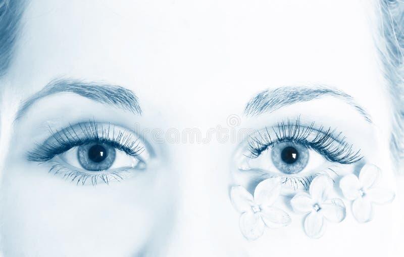 Ojo femenino hermoso macro foto de archivo libre de regalías