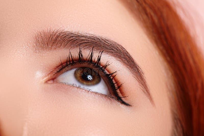 Ojo femenino macro hermoso con las pesta?as largas extremas y celebrar maquillaje El maquillaje perfecto de la forma, forma latig foto de archivo libre de regalías