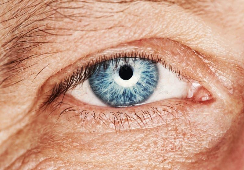 Ojo humano fotografía de archivo