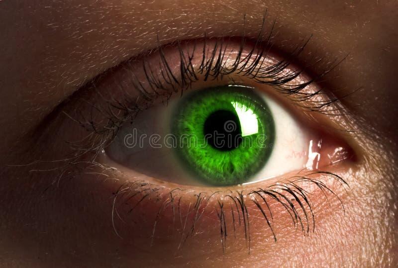 Ojo humano de color verde oscuro. foto de archivo libre de regalías