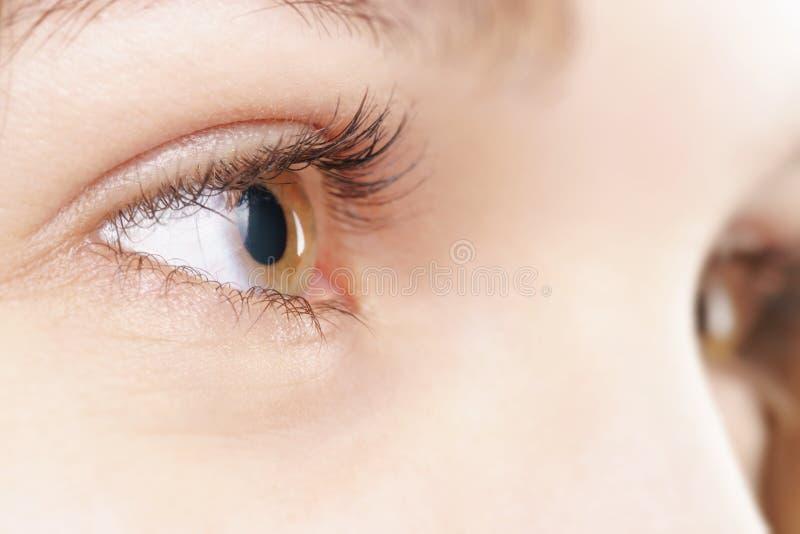 Ojo pardo femenino joven con la lente de contacto fotos de archivo libres de regalías