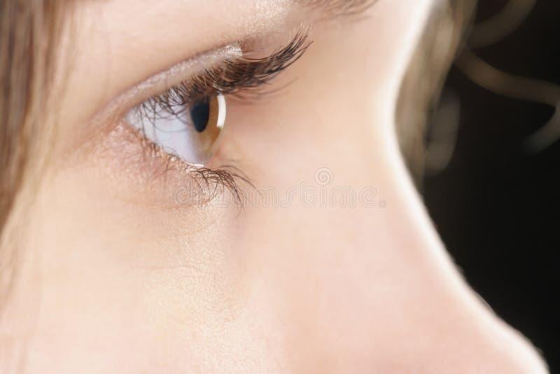 Ojo pardo femenino joven con la lente de contacto fotos de archivo