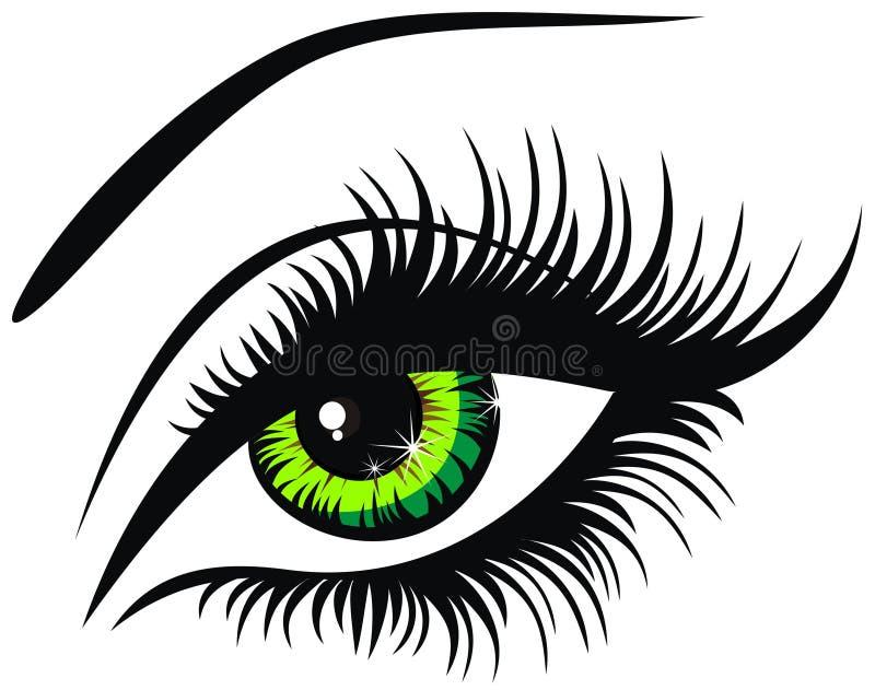 Ojo verde stock de ilustración