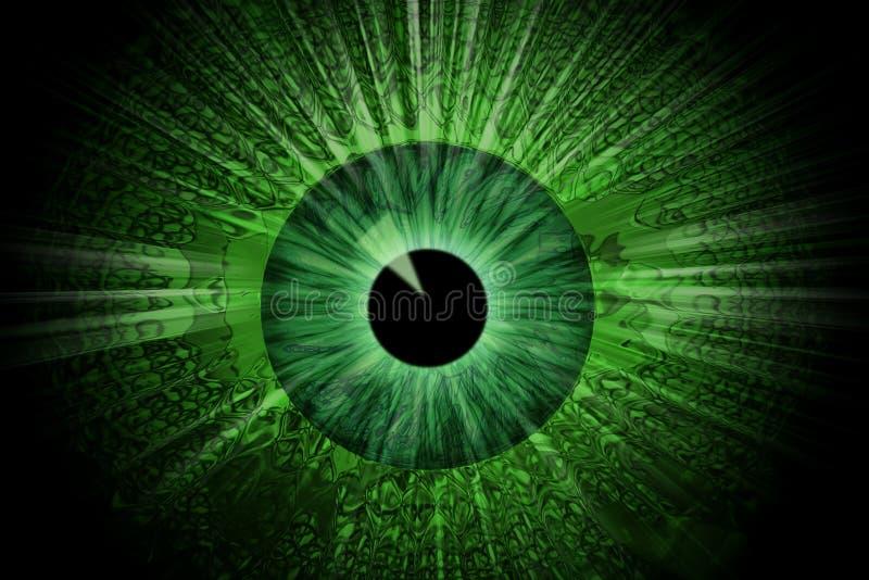Ojo verde ilustración del vector