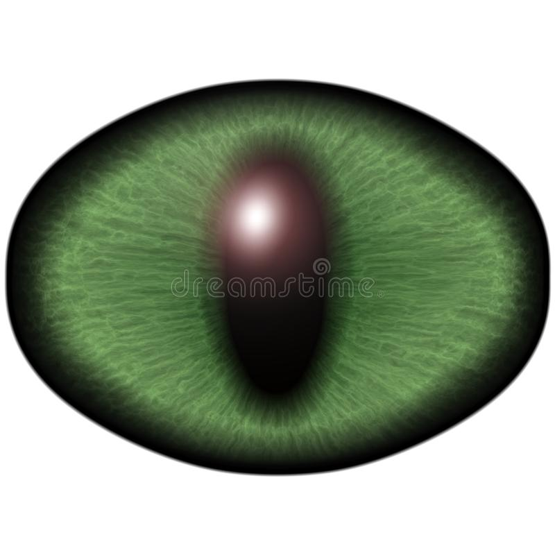 Ojo verde extraño del animal felino con el iris coloreado Detalle la opinión en bulbo despredador aislado del ojo ilustración del vector