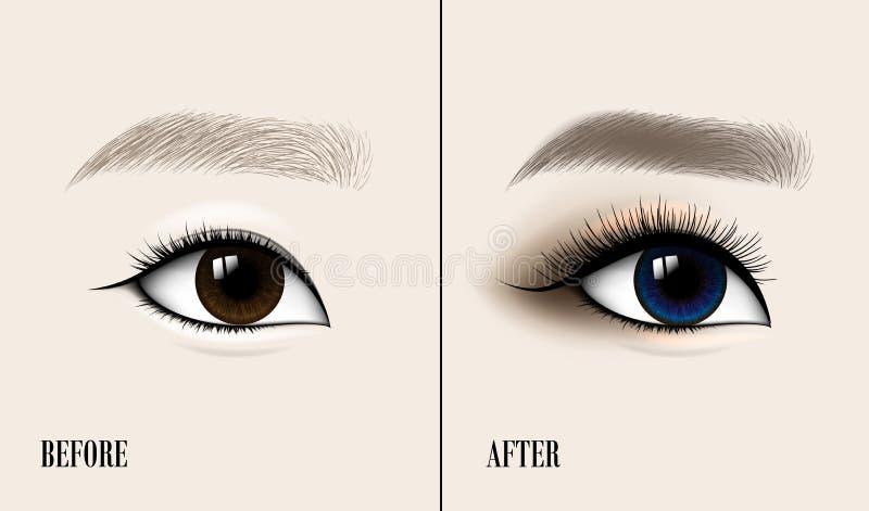 Ojo y frente asiáticos hermosos de la mujer Antes y después de maquillaje Ilustración del vector ilustración del vector