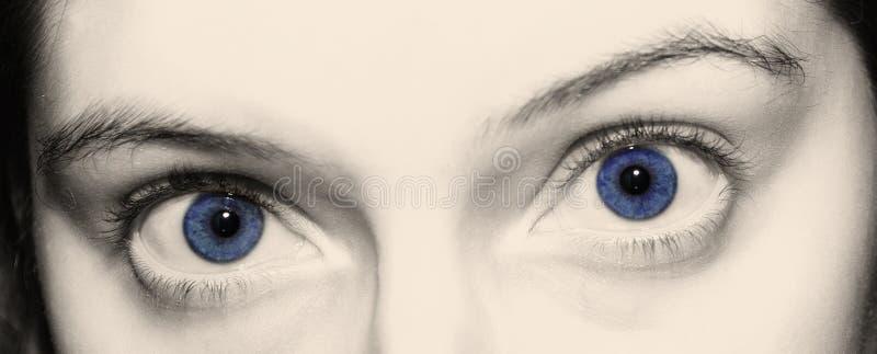 Ojos azules imágenes de archivo libres de regalías