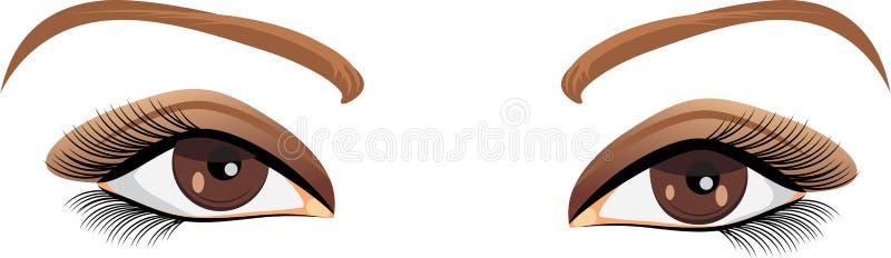 Ojos de la hembra de Brown ilustración del vector