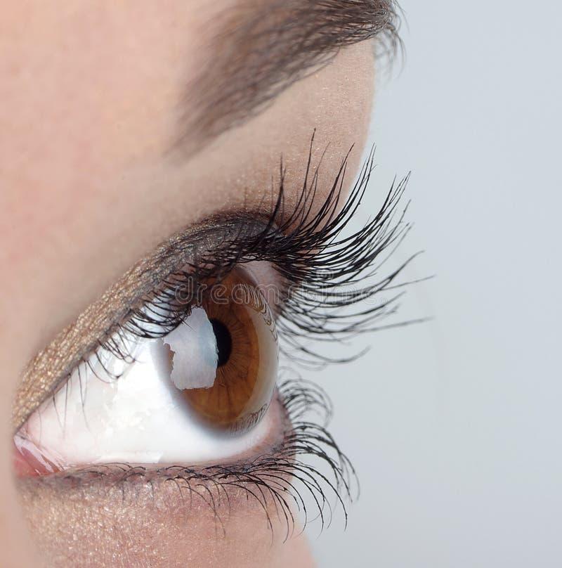 Ojos de las mujeres imagen de archivo libre de regalías