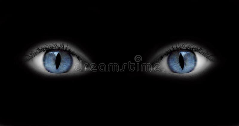 Ojos del Catwoman fotos de archivo