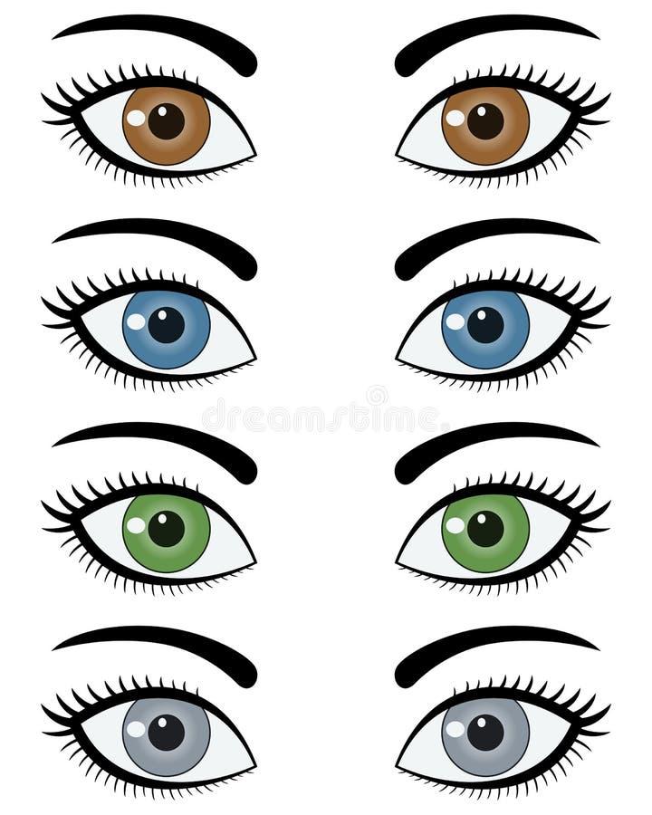 Ojos del conjunto de la mujer stock de ilustración