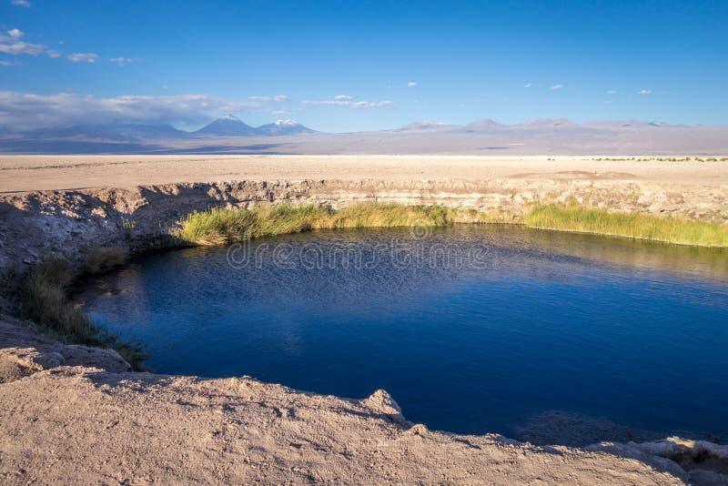 Ojos del salar landmark in San Pedro de Atacama, Chile royalty free stock photos