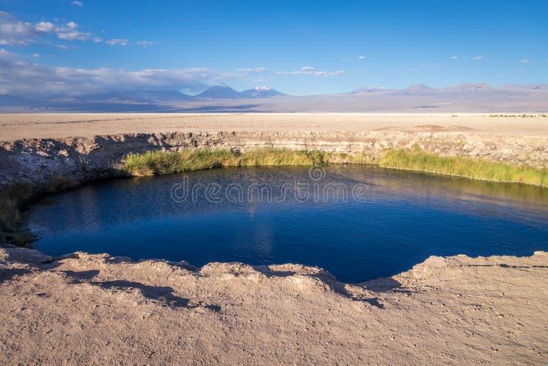 Ojos del Salar punkt zwrotny w San Pedro De Atacama, Chile obrazy stock