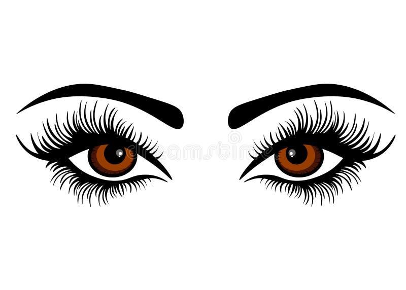 Ojos femeninos del vector de la web con los latigazos largos ilustración del vector