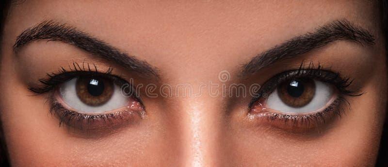 Ojos hermosos de la hembra fotos de archivo
