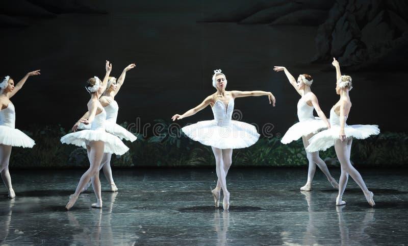 Ojta a mal compris la scène de bout de prince-Le du lac swan de Lac-ballet de cygne photo libre de droits