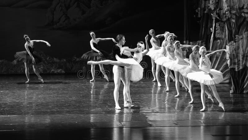 Ojta navré a commis le suicide en sautant dans une scène de bout de rivière-Le de lac swan de Lac-ballet de cygne image libre de droits