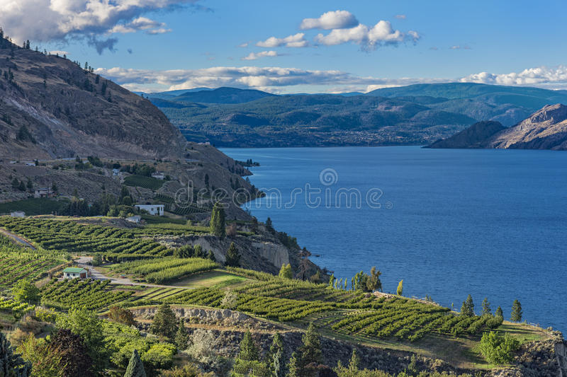 Okanagan Lake near Summerland British Columbia Canada. With orchard and vineyard in the Foreground stock images