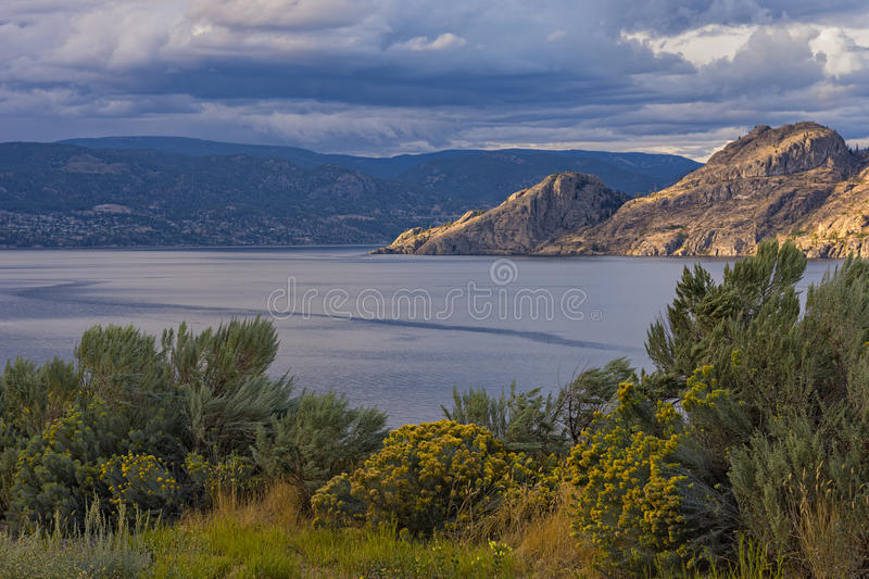 Okanagan Lake near Summerland British Columbia Canada. With Sage and Flowers in the Foreground stock photos