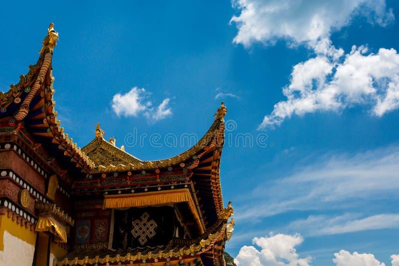 Okapy latanie na niebie obrazy stock
