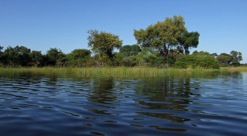 Okavango stock afbeeldingen