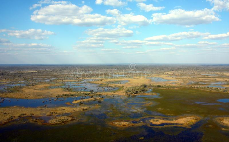 Okavango Delta. The Okavango Delta (or Okavango Swamp), in Botswana, is a large inland delta, formed where the Okavango River reaches a tectonic trough in the royalty free stock images