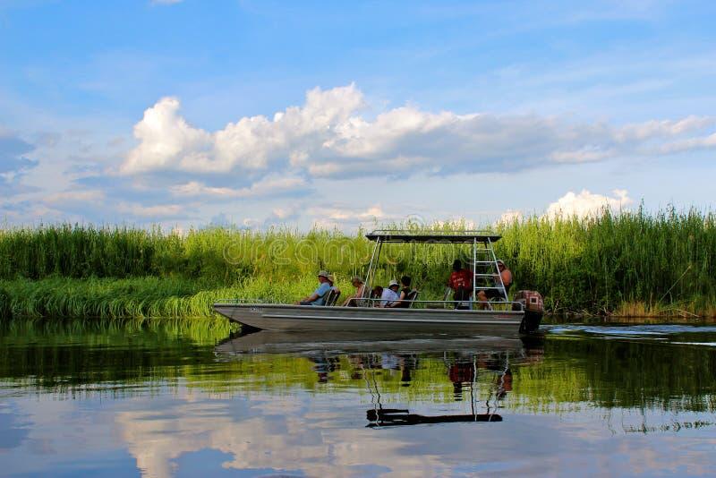Okavango delta arkivfoto
