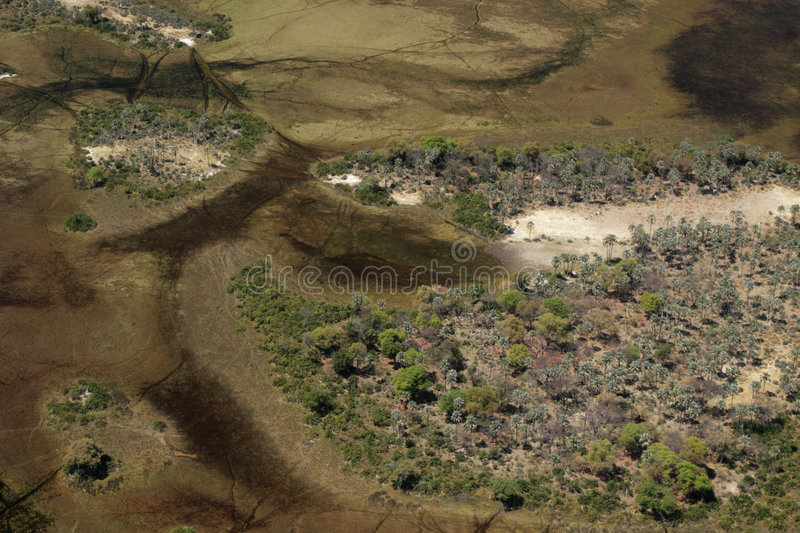 Download Okavango Delta stock image. Image of nature, aerial, delta - 7001205