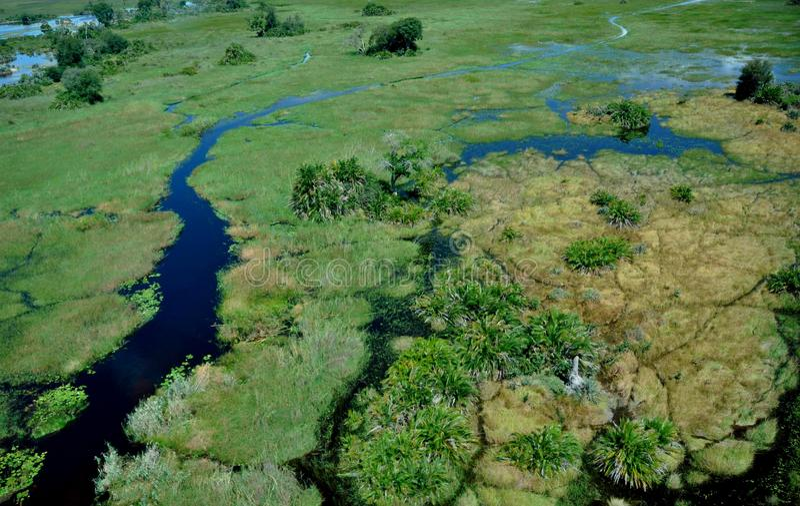 Okavango-delta : les plus grandes inondations depuis 46 ans photo libre de droits