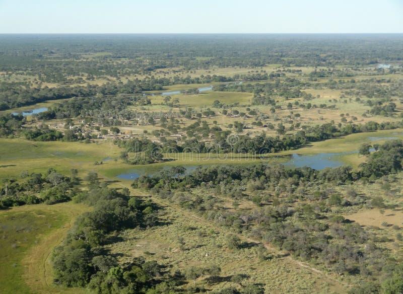 Okavango Dreieck stockfotos
