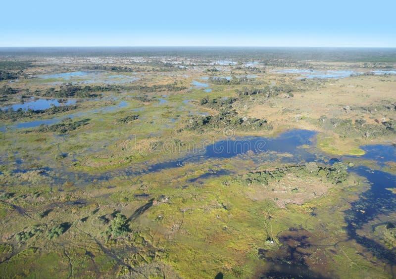 Okavango Dreieck stockbild